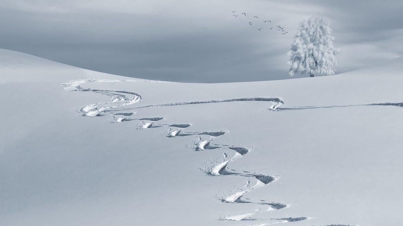 Paysage de montagne sous la neige