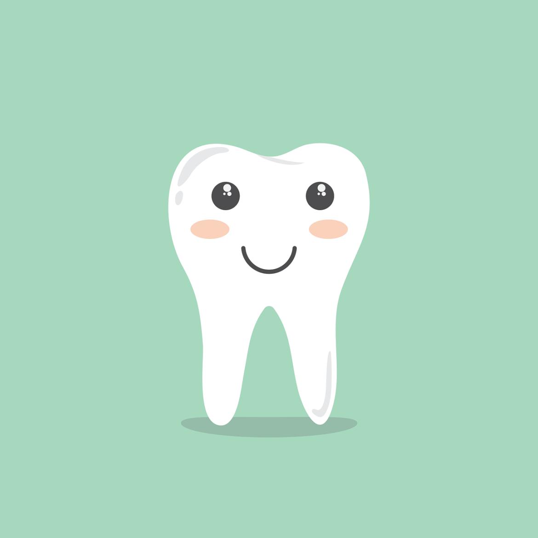 Illustration graphique de dents bien soignées