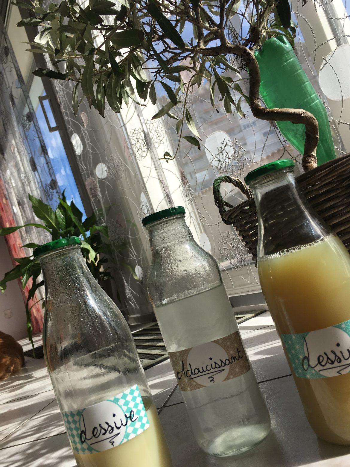 Bouteilles en verre de lessive et assouplissant devant un petit olivier