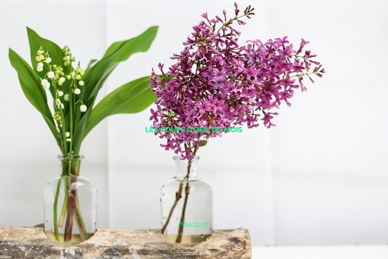 Les coups d'oeil du mois - Mai 2018 (sur fond de fleurs de muguet)