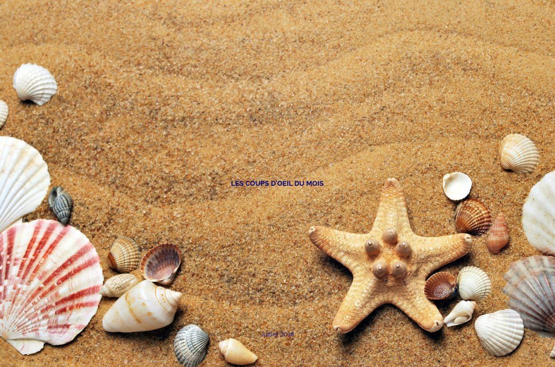 Les coups d'oeil du mois juillet 2018 sur fond de plage et d'océan