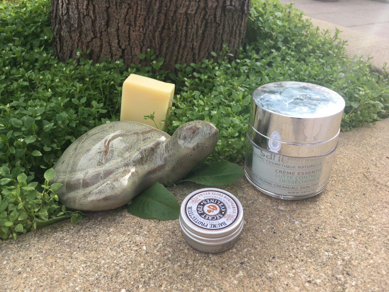 Une tortue en céramique au milieu de la verdure