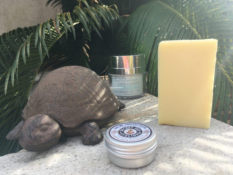 Statuette de tortue dans la végétation avec le titre Slow Cosmétique