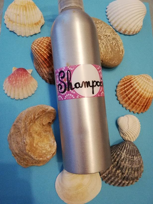 Bouteille de shampoing sur fond azur entourée de coquillages