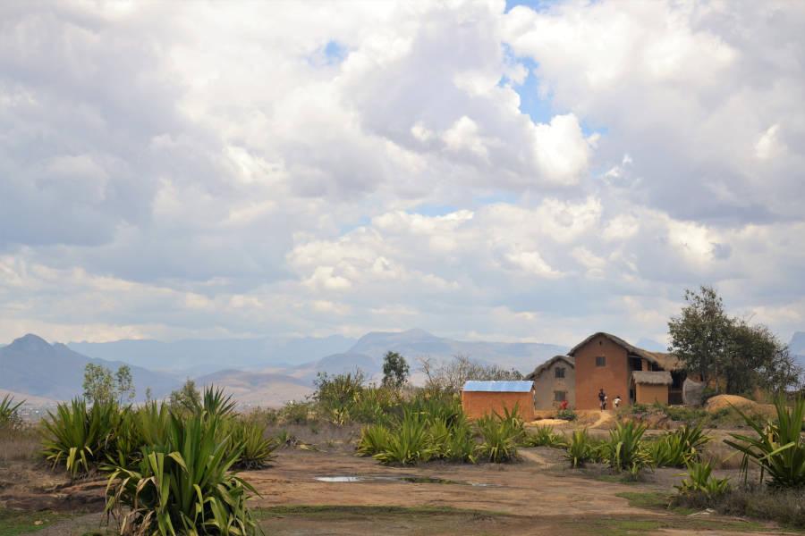 Un champ de plantes grasses avec à droite les quelques maisons d'un petit village